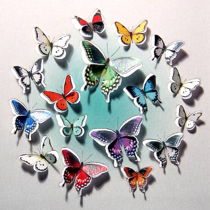 Forever 'push out' 3D sculpture effect Greeting Card - butterflies and flowers