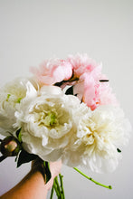 Load image into Gallery viewer, Fresh Peony Bunch