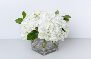 Clean and Green Hydrangea Centerpiece