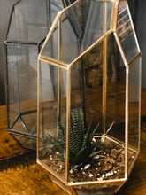 Load image into Gallery viewer, Geometric Succulent Terrarium