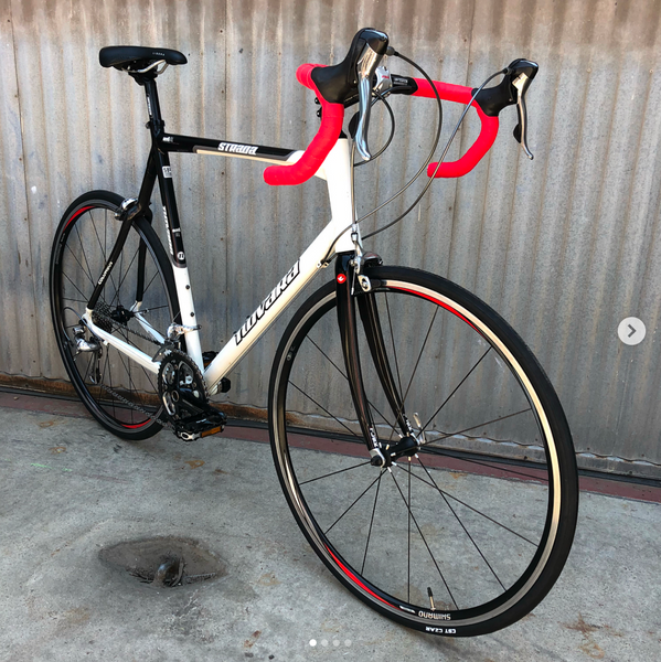 Novara Strada Aluminum and Carbon Fiber Road Bike