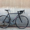 Moth Attack Ultegra Custom Handmade Bicycle