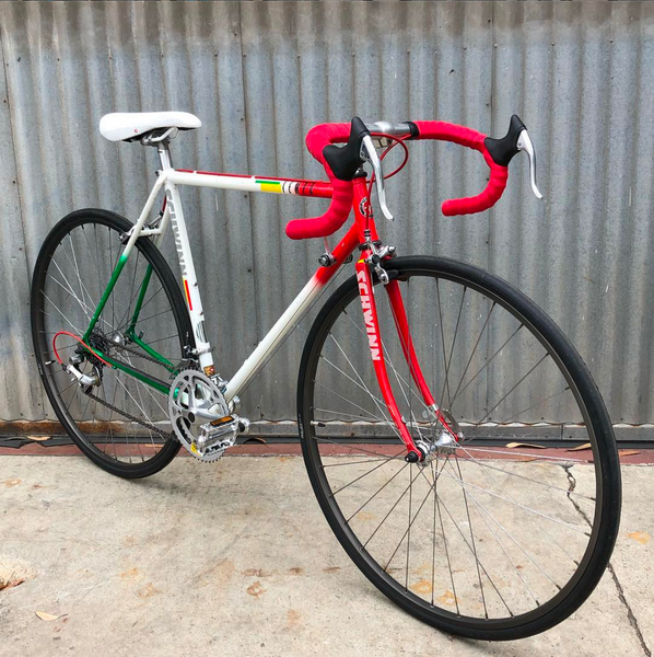 SCHWINN Tempo Road Bike in Interesting Colorway - Smaller 52 CM Bike