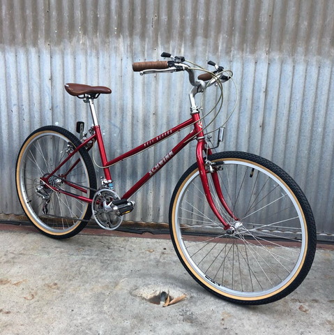 Schwinn Mesa Runner Converted to Cool City Bike