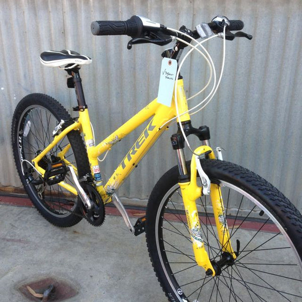 Trek Skye City Bike