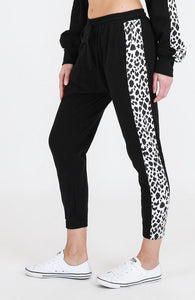 Leopard Contrast Jogger by 3rd Story