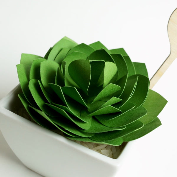 Paper Succulent Tutorial And Templates