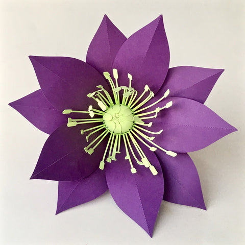Paper Flower Template Hellebore For Silhouette Or Cricut Explore