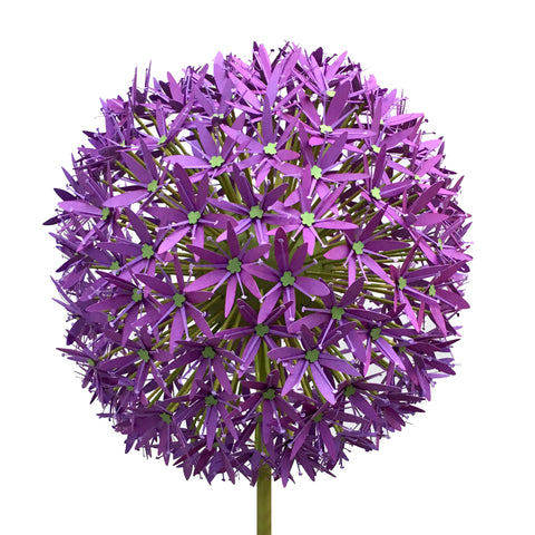 Giant Allium, Paper Flower Template for Cutting Machines (SVG, DXF)