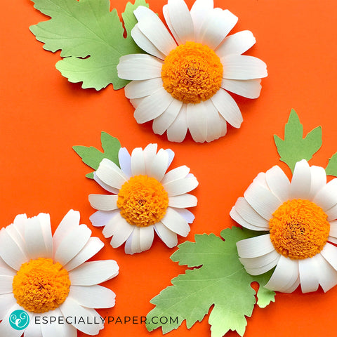 Small Daisy, Paper Flower Template (SVG, DXF)