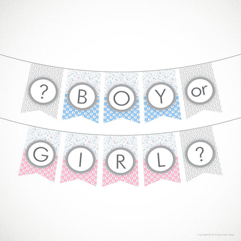 Printable Banner, Gender Reveal Banner