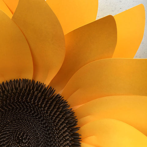Sunflower diy templates for silhouette or cricut explore svg dxf sunflower diy templates for silhouette or cricut explore svg dxf mightylinksfo