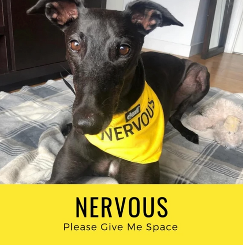 NERVOUS - 'Please give me space'