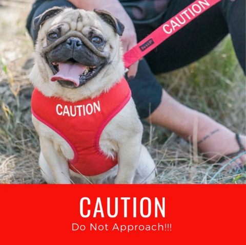 CAUTION - 'Do not approach!!'