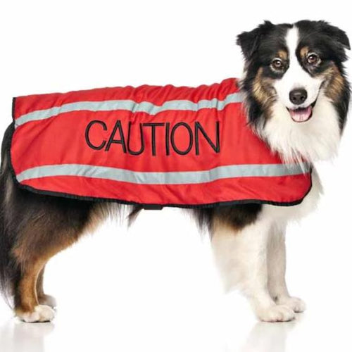 Caution Dog Coat