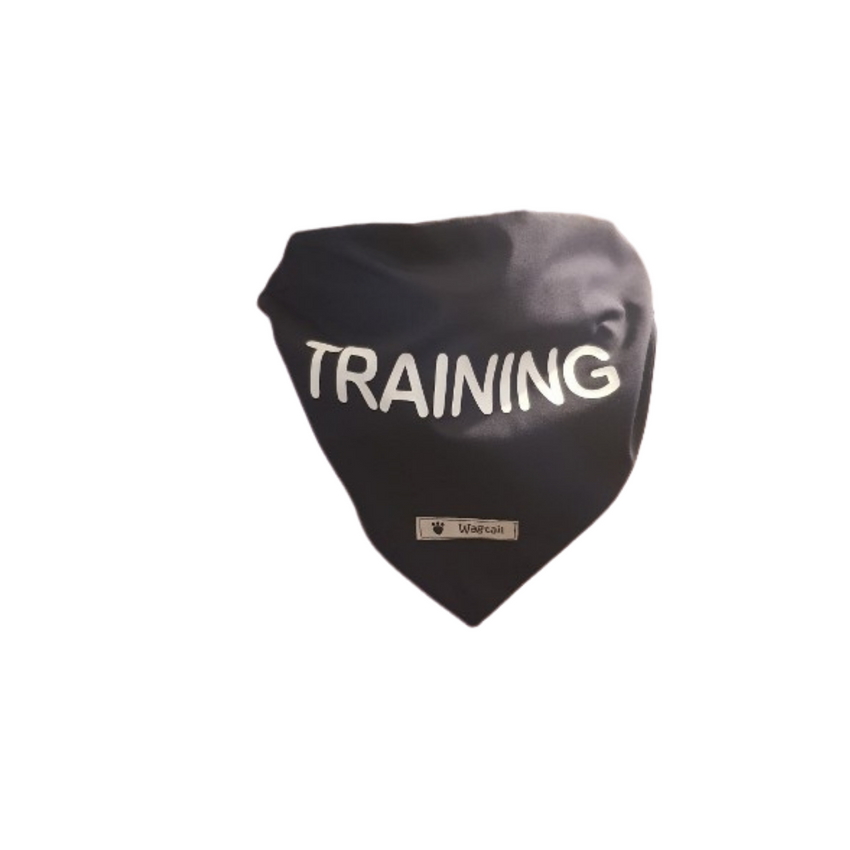 Training Bandanna