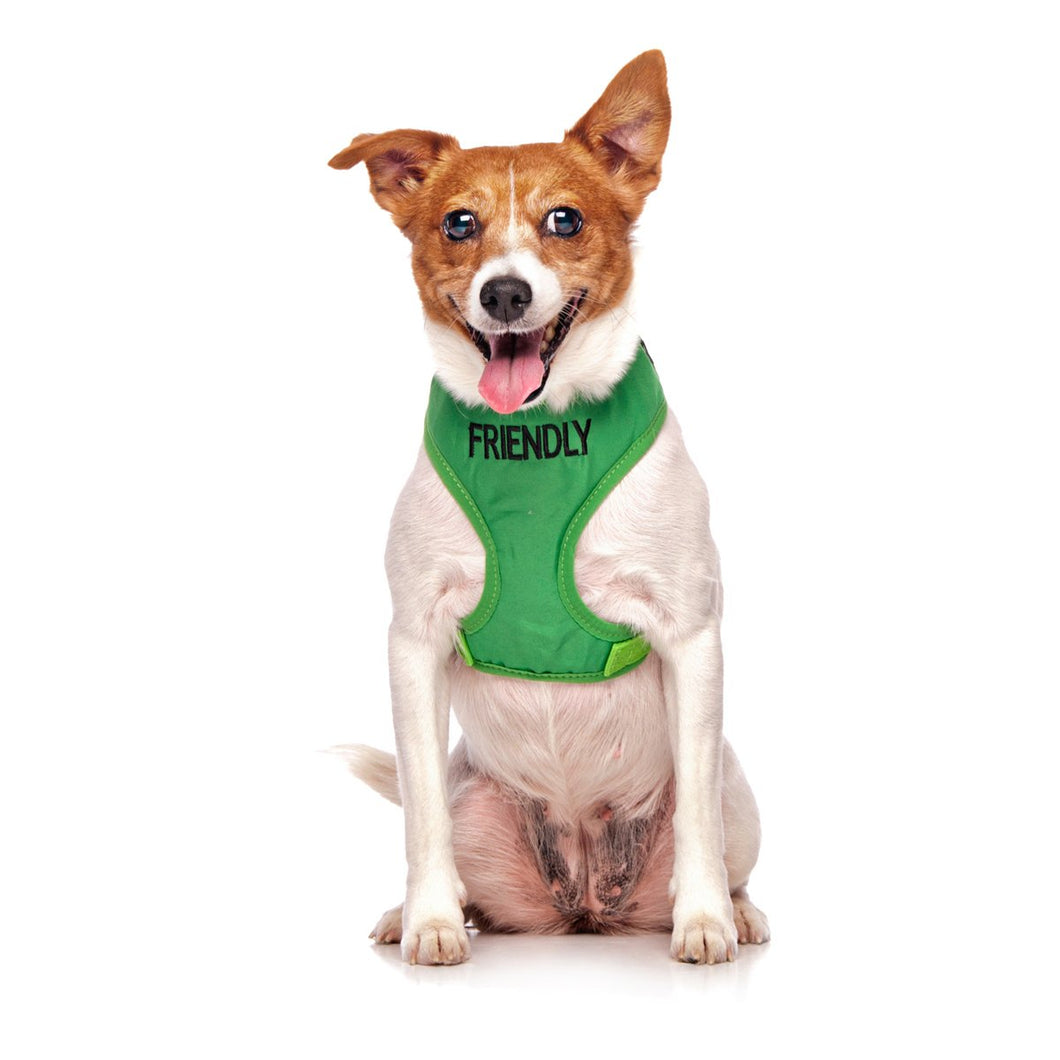 Friendly Vest Harness