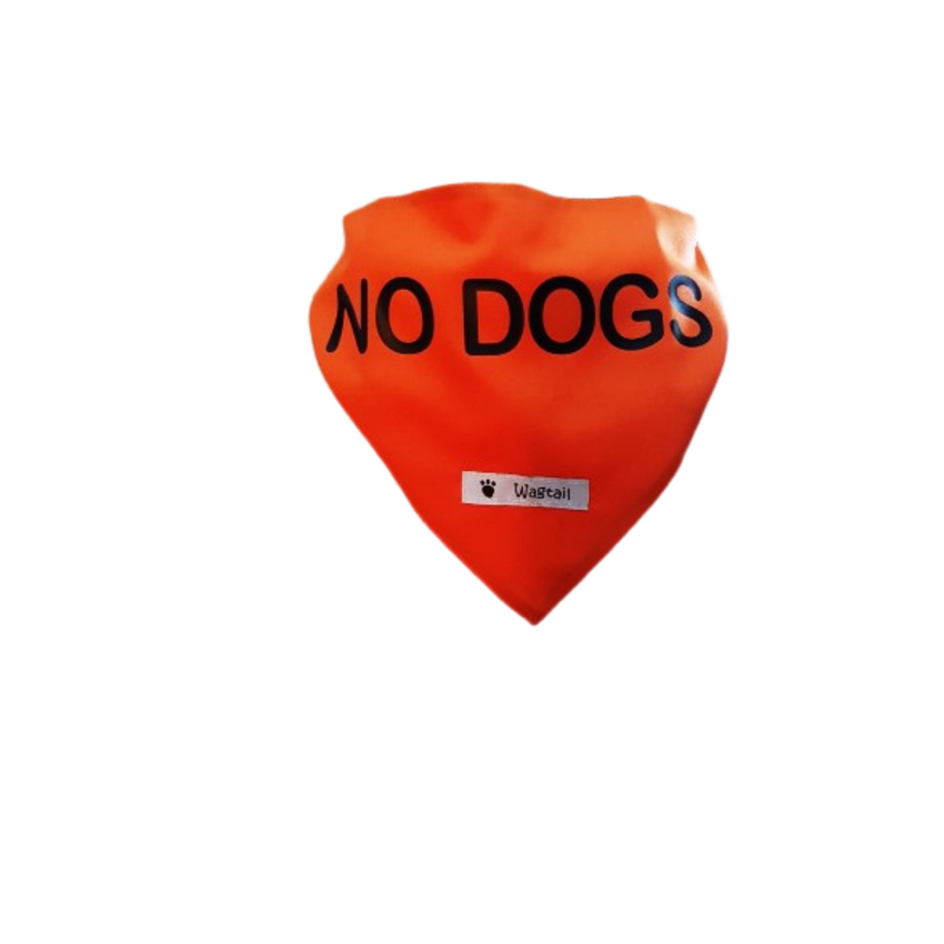 No Dogs Bandanna