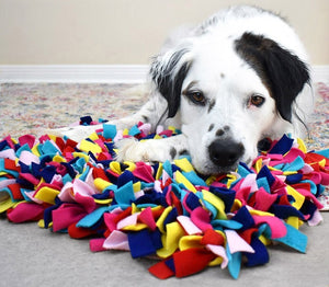 Snuffle Enrichment Mats for Pets