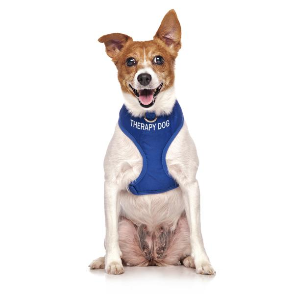 Therapy Dog Vest Harness