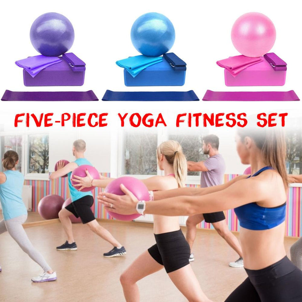 5 Piece set fitness exercise resistance ball balance
