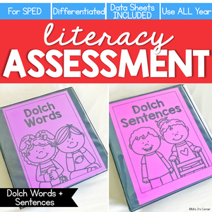 Dolch Words + Sentences Assessment, Writing - Literacy Reading Assessment