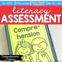 Load image into Gallery viewer, Comprehension and Fluency Assessment - Literacy Reading Assessment