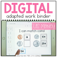 Load image into Gallery viewer, DIGITAL Adapted Work Binder ( US Money )