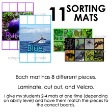 Load image into Gallery viewer, Colors Sorting Mats with REAL Pictures [11 mats] | Real Picture Sorting Mats