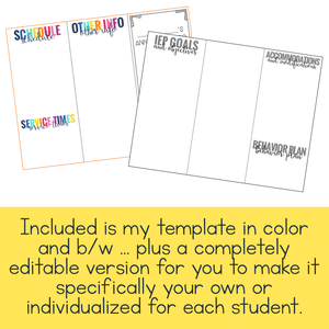 Editable IEP at a Glance Brochure | IEP Snapshot Brochure
