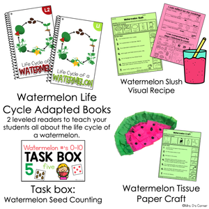 July Lesson Plan Pack | 12 Activities for Math, ELA, + Science
