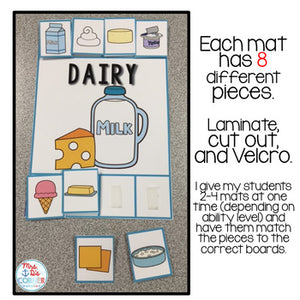 Food Pyramid Sorting Mats [6 mats!] for Students with Special Needs