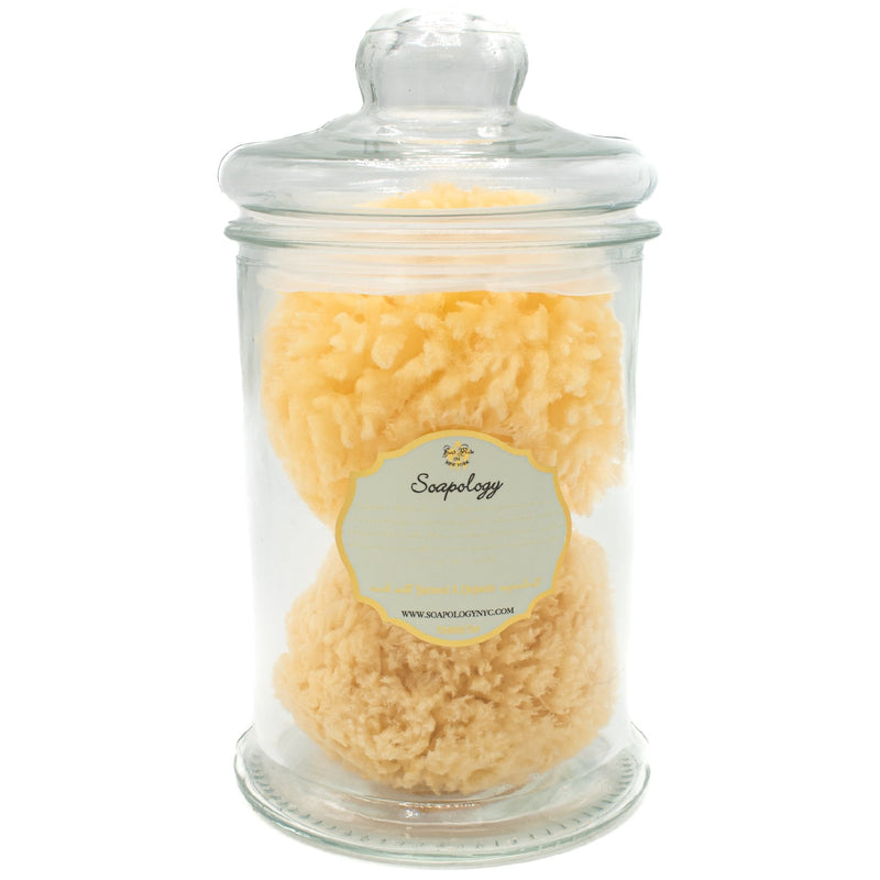 Natural SEA SPONGE APOTHECARY Jar - SoapologyNYC ACCESSORIES