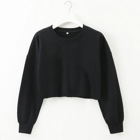 Crop Top Thin Sweater