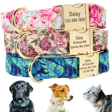 Load image into Gallery viewer, Adjustable Personalized Engraved Nameplate ID Tag Dog Collar