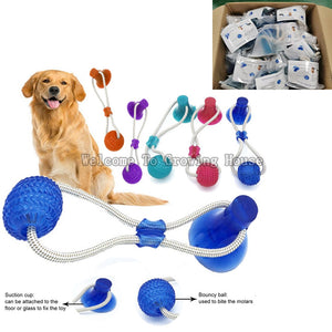 Interactive Teeth Cleaning IQ Treat Chew Toy
