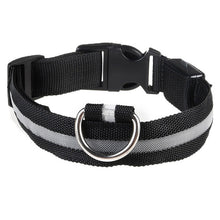 Load image into Gallery viewer, Rechargeable Luminous Nylon Dog Collar
