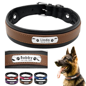Personalized Padded Genuine Leather Dog ID Tag Collar