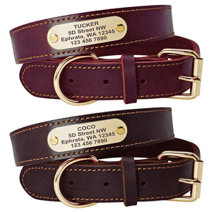 Personalized Engraved Nameplate Genuine Leather Dog Collar