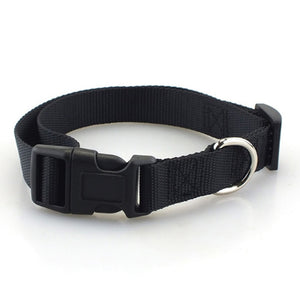Adjustable Dog Collar With Quick Snap Collar