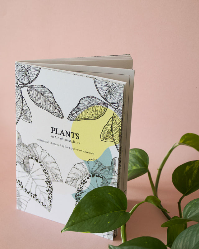 how to care for plants book illustrated by flora grosvenor-stevenson