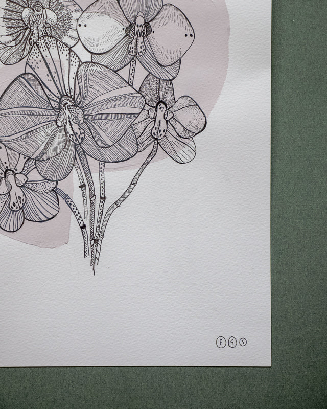 original art of florwers and orchids by flora grosvenor-stevenson
