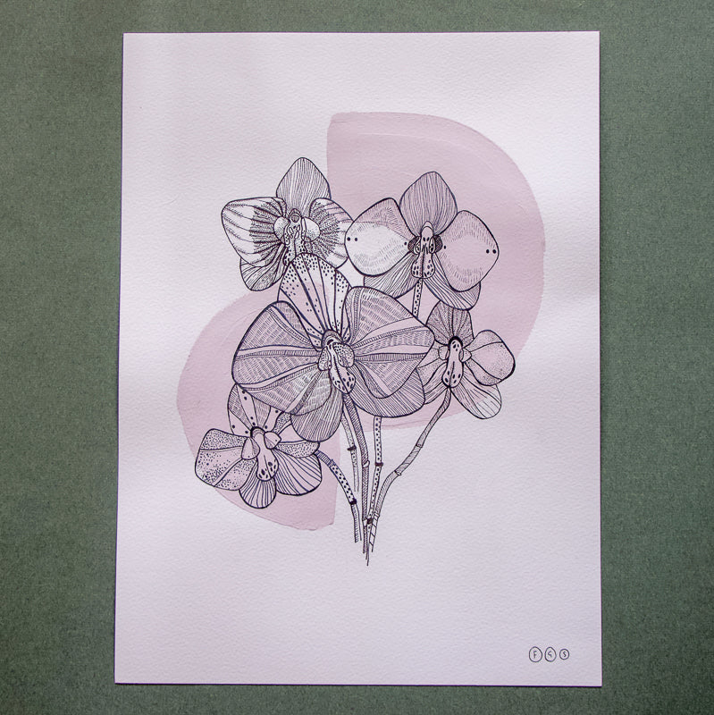 original artwork of florwers and orchids by flora grosvenor-stevenson