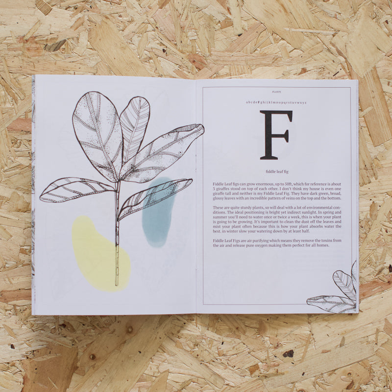 a to z on plants illustrated by flora grosvenor-stevenson