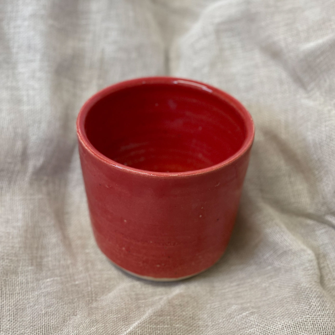 Rich Red Plant Pot