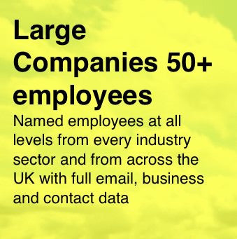 84,000 UK employees of Large Companies with 50+ employees - All with full Email and Business data
