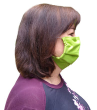Load image into Gallery viewer, N-99 Reusable Surgical Mask