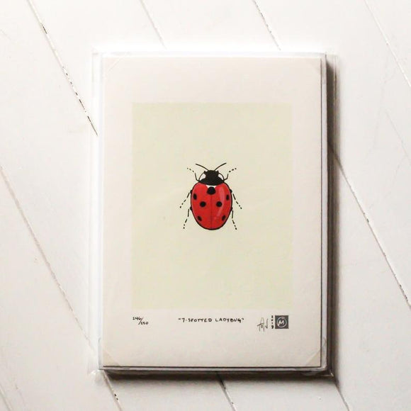 Ladybug Silkscreen Print by Allison and Jonathan Metzger