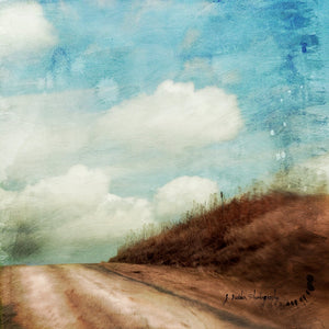 Blue Like Me by Jamie Heiden