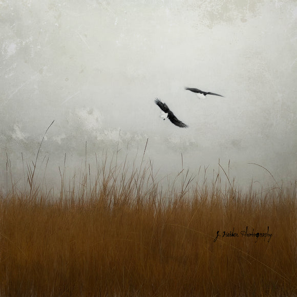 But First I'll Make You Strong by Jamie Heiden